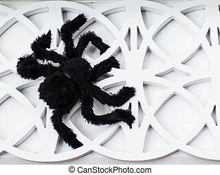 parete, bianco, decoration., nero, ragno