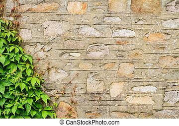 parete, strone, vecchio, arrampicatori