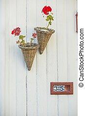 parete, vimine, otri, geranio, fiori bianchi, rosso
