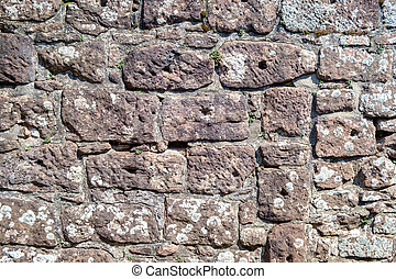 pareti, roccia