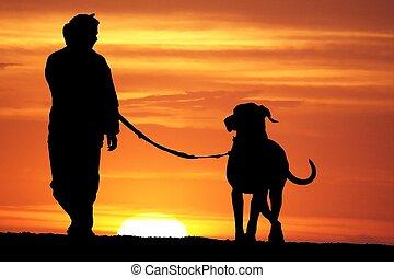 passeggiata, cane, alba