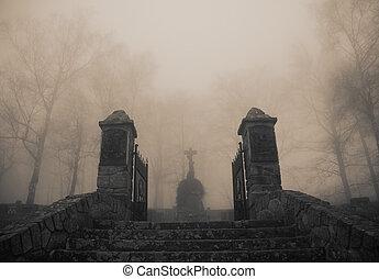 pauroso, cimitero, vecchio, entrata, foresta densa, nebbia