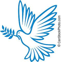 (peace, dove), pace, colomba