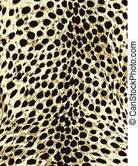 pelle, moda, stampa, leopardo, animale