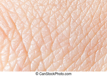 pelle umana