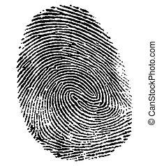 perfetto, pollice, impronta digitale
