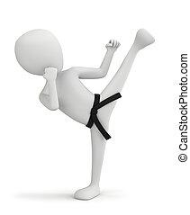 persone, -, fighter., karate, piccolo, 3d