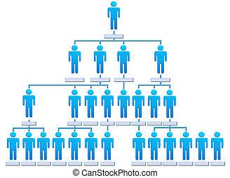 persone, gerarchia, ditta, grafico, organizzazione, corporativo