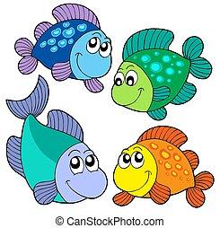 pesci, carino, set