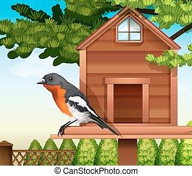 pethouse, uccello