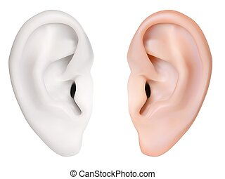photo-realistic, ear., vector., isolato, umano, bianco