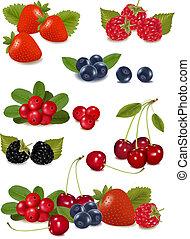 photo-realistic, gruppo, grande, illustrazione, berries., vettore, fresco
