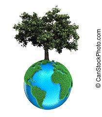 pianeta, albero