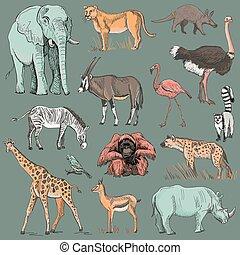 pianeta, disegnato, animale, illustrazione, mano