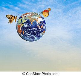 pianeta, elementi, immagine, nasa, earth., farfalla, ammobiliato, questo
