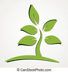 pianta, concetto, verde, natura