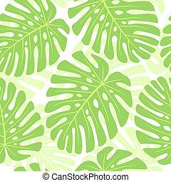 pianta, foglie, -, seamless, tropicale, fondo., monstera., vettore