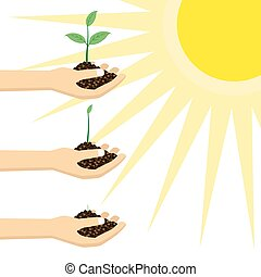 pianta, giovane persona, sun., presa a terra, sotto