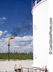 pianta, prodotto petrochimico, gas, urente