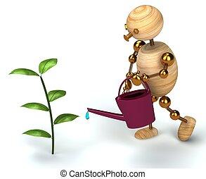 piante acqua, legno, uomo