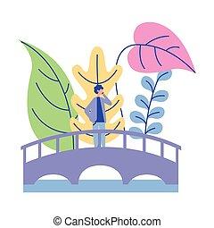 piante, ponte, camminare, uomo, natura