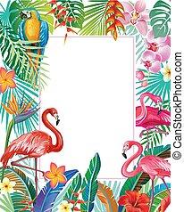 piante, tropicale, bordo, flamingoes