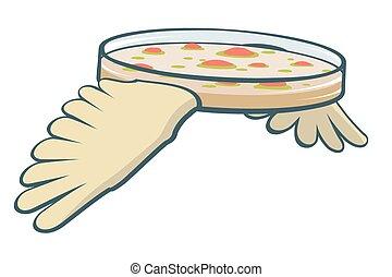 piatto, pietanza, volare, petri