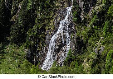 piccolo, cascata, verde, natura