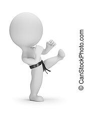 piccolo, karate, 3d, -, persone