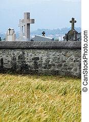 pietra, cemeter, campo, parete, frumento