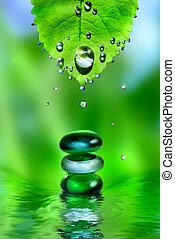pietre, foglia, acqua, equilibratura, fondo, terme, verde, gocce, baluginante
