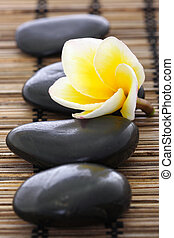 pietre, frangipani, stuoia, terme