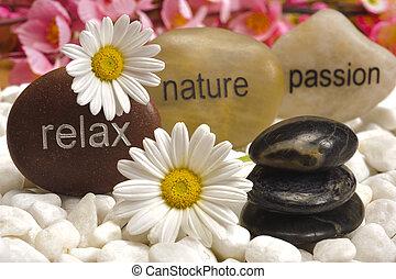 pietre, giardino, natura, rilassare, zen, passione