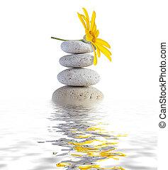 pietre, terme, fiore, zen