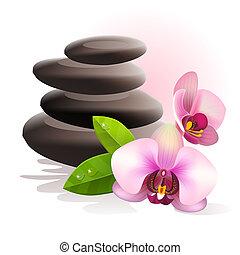 pietre, terme, fiori
