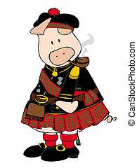 pipe., maiale, kilt, scozzese