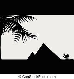 piramide, illustrazione, cammello