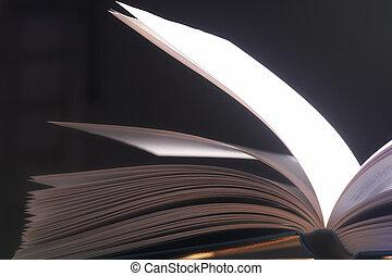 pitched, seiten-, pagine, aufgeschlagene