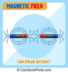 poli, attrarre, come, campo, magnetico