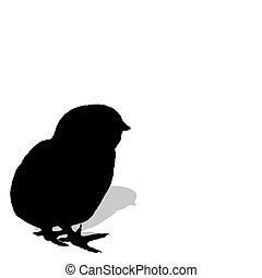 pollo, silhouette
