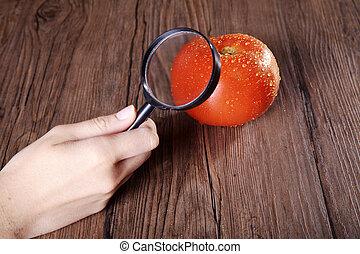 pomodoro, vetro, ingrandendo