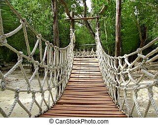 ponte, legno, corda, giungla, sospensione, avventura