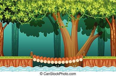 ponte legno, foresta