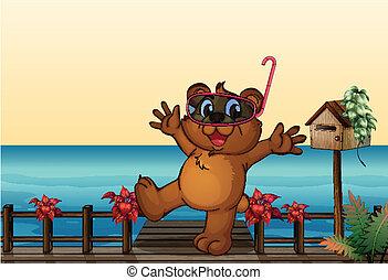 ponte legno, giovane, orso