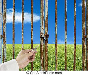 porta blu, prato, cielo, mano, chiave, sfondo verde, chiuso chiave, presa, sbloccando
