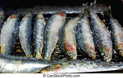 portoghese, sardine
