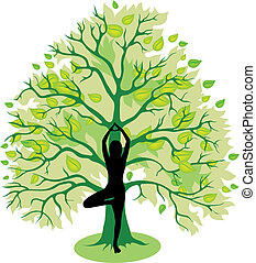 posa albero, yoga