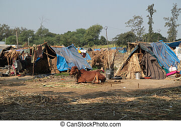 povero, abitazioni