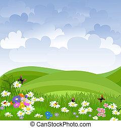 prato, fiori, paesaggio