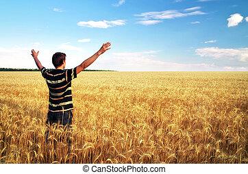 prato, scene., emotivo, uomo, dorato, wheat.